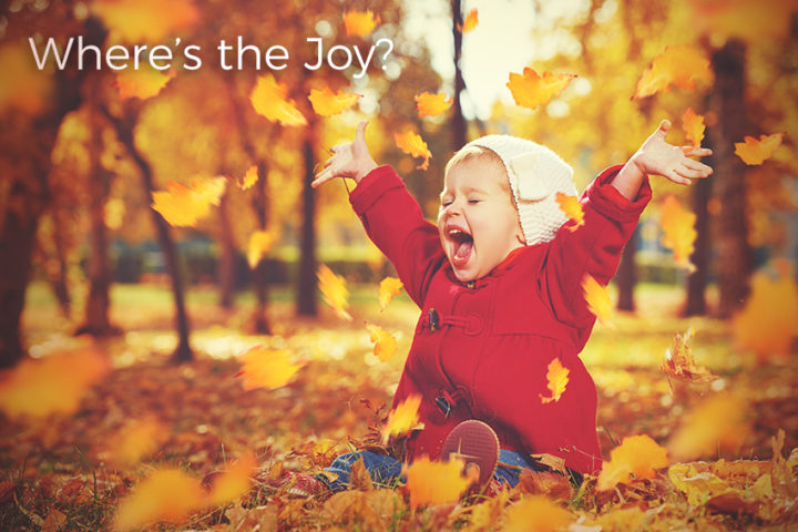 where-is-the-joy-of-the-lord